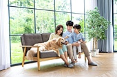 가족, 집 (주거건물), 애완동물 (길든동물), 골든리트리버 (리트리버), 함께함 (컨셉), 거실, 미소