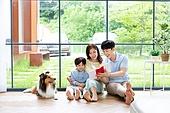 가족, 집 (주거건물), 애완동물 (길든동물), 셔틀랜드쉽독 (콜리), 함께함 (컨셉), 거실, 미소, 책, 읽기 (응시)