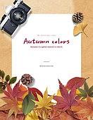 그래픽이미지 (Computer Graphics), 편집디자인, 이벤트페이지, 상업이벤트 (사건), 프레임, 계절, 단풍 (가을), 단풍잎 (잎), 종이, 재질, 잎 (식물부분), 카메라