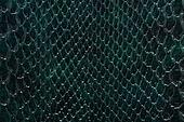 스튜디오촬영, 천 (재료), 재질, 백그라운드, 패턴, 옷감샘플 (천), 오브젝트 (묘사), 가죽제품 (재료), 컬러, 녹색 (색상)