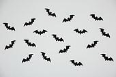 할로윈, 박쥐, 패턴, 백그라운드