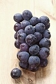 포도,과일