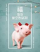 새해 (홀리데이), 돼지 (발굽포유류), 새끼돼지 (새끼), 돼지띠해 (십이지신), 동물, 연례행사 (사건)