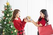 여성, 크리스마스, 친구, 미소, 즐거움, 쇼핑백, 어깨에올리기 (운반), 선물 (인조물건), 건네주기 (주기)