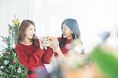 여성, 크리스마스, 친구, 미소, 즐거움, 선물 (인조물건), 건네주기 (주기)