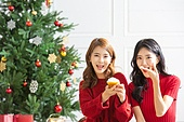 여성, 크리스마스, 친구, 미소, 즐거움, 크림 (유제품)