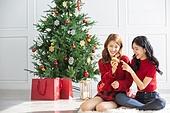 여성, 크리스마스, 친구, 미소, 즐거움