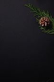 사진, 크리스마스, 탑앵글, 오브젝트 (묘사), 겨울, 장식품 (인조물건), 백그라운드, 스튜디오촬영 (실내), 카피스페이스, 크리스마스트리 (크리스마스데코레이션), 크리스마스오너먼트 (크리스마스데코레이션), 솔방울, 잎 (식물부분), 검정색 (색상)