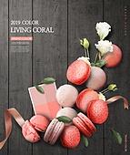 컬러, 리빙코랄 (색상), 산호색 (색상), 트렌드
