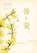 봄, 계절, 꽃, 파스텔톤 (색상강도), 개나리