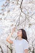 여성, 봄, 벚꽃, 벚나무 (과수), 향기 (냄새)