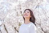 여성, 봄, 벚꽃, 벚나무 (과수), 바람