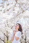 여성, 봄, 벚꽃, 벚나무 (과수), 바람, 손모으기 (제스처)