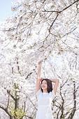 여성, 봄, 벚꽃, 벚나무 (과수), 눈감음 (정지활동), 산림욕