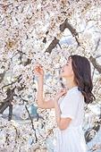 여성, 봄, 벚꽃, 벚나무 (과수), 눈감음 (정지활동)