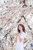 여성, 봄, 벚꽃, 벚나무 (과수), 만족