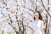 여성, 봄, 벚꽃, 벚나무 (과수), 미소, 휴식, 가지 (식물부분), 앉기 (몸의 자세), 눈감음 (정지활동)