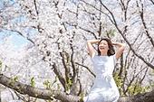 여성, 봄, 벚꽃, 벚나무 (과수), 미소, 휴식, 가지 (식물부분), 앉기 (몸의 자세), 만족, 눈감음 (정지활동)