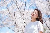 여성, 봄, 벚꽃, 벚나무 (과수)