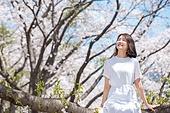 여성, 봄, 벚꽃, 벚나무 (과수), 미소, 휴식, 가지 (식물부분), 앉기 (몸의 자세), 눈감음 (정지활동), 감성 (컨셉)