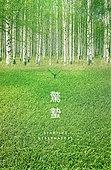 봄, 백그라운드, 절기, 계절, 숲, 나무
