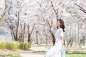 여성, 봄, 벚꽃, 벚나무 (과수), 교외전경 (Setting), 여행, 산책길 (보행로), 미소