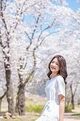여성, 봄, 벚꽃, 벚나무 (과수), 교외전경 (Setting), 휴식, 여행, 산책길 (보행로), 미소