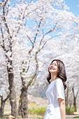 여성, 봄, 벚꽃, 벚나무 (과수), 교외전경 (Setting), 휴식, 여행, 산책길 (보행로), 미소, 행복
