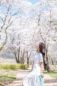 여성, 봄, 벚꽃, 벚나무 (과수), 교외전경 (Setting), 여행, 산책길 (보행로), 눈감음 (정지활동), 미소