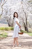 여성, 봄, 벚꽃, 벚나무 (과수), 교외전경 (Setting), 여행, 미소
