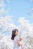 여성, 봄, 벚꽃, 벚나무 (과수), 교외전경 (Setting), 여행, 뒷모습, 미소