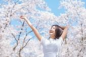 여성, 봄, 벚꽃, 벚나무 (과수), 교외전경 (Setting), 여행, 팔들기, 행복