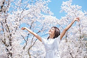 여성, 봄, 벚꽃, 벚나무 (과수), 교외전경 (Setting), 여행, 팔들기, 미소, 팔벌리기 (제스처)