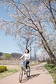 여성, 봄, 벚꽃, 벚나무 (과수), 교외전경 (Setting), 공원, 여행, 자전거, 타기, 미소