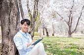 남성, 봄, 벚꽃, 휴식, 읽기 (응시), 미소