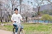 남성, 봄, 벚꽃, 휴식, 자전거, 타기, 미소