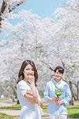 커플 (인간관계), 봄, 여유로운주말 (레저활동), 벚꽃, 데이트, 프로포즈, 미소