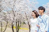 커플 (인간관계), 봄, 여유로운주말 (레저활동), 벚꽃, 데이트, 걷기 (물리적활동), 미소