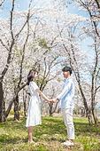 커플 (인간관계), 봄, 여유로운주말 (레저활동), 벚꽃, 데이트, 미소, 손잡기