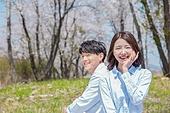 커플 (인간관계), 봄, 여유로운주말 (레저활동), 벚꽃, 데이트, 소풍, 미소, 등맞대기