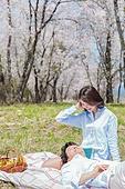 커플 (인간관계), 봄, 여유로운주말 (레저활동), 벚꽃, 데이트, 강변, 낮잠, 눕기 (몸의 자세), 미소