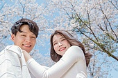 커플 (인간관계), 봄, 여유로운주말 (레저활동), 벚꽃, 데이트, 포옹, 미소, 어깨위에손 (몸의 자세), 손허리 (몸의 자세)