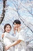 커플 (인간관계), 봄, 여유로운주말 (레저활동), 벚꽃, 데이트, 뺨 (Body Part), 꼬집기 (만지기), 밝은표정, 포옹