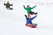 어린이 (인간의나이), 소년 (남성), 겨울, 썰매타기 (겨울스포츠), 썰매 (레크리에이션장비), 미소, 즐거움, 플레이 (움직이는활동), 아빠, 속도