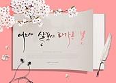 그래픽이미지, 편집디자인, 프레임, 종이, 꽃, 봄, 캘리그래피 (문자), 손글씨, 탑앵글 (뷰포인트)