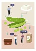 유전자변형, 유전자변형식품, GMO, 라이프스타일, 음식, 완두콩깍지 (채소), 완두 (채소), 두부, 된장 (한식), 두유