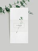 초대장, 감성, 트렌드, 메시지, 잎, 기념일카드