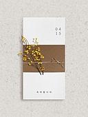 초대장, 감성, 트렌드, 메시지, 꽃, 기념일카드