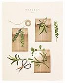 포장, 상자, 꽃, 선물 (인조물건), 선물상자 (상자), 오브젝트 (묘사), 봄, 잎, 목화솜