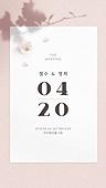 봄, 청첩장, 모바일, 초대장, 꽃